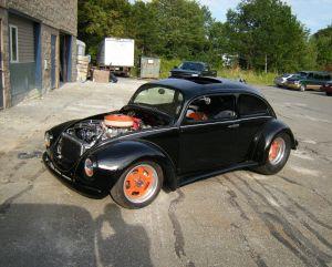 Beetle (16)
